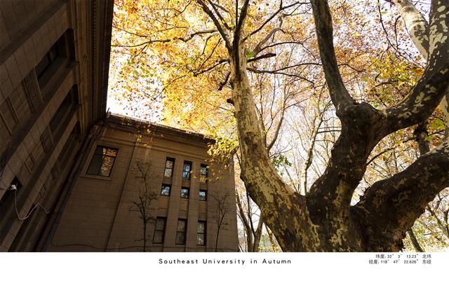 东南大学之秋